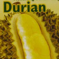 Frozen durian bought in Helsinki, Finland